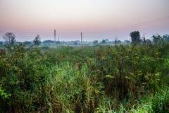 在微明的Countryfield 免版税库存照片