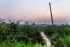 在微明的Countryfield 免版税图库摄影