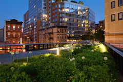 在微明的Highline在第10条大道和第17条街道切尔西,纽约附近的夏天 免版税图库摄影