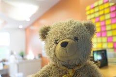 在微笑面孔n的玩偶熊弄脏了象类的h的室或办公室 免版税库存图片