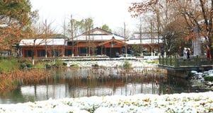 在微风的莲花在弯曲的庭院在雪以后的冬天 免版税库存照片