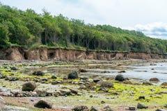 在德国海岛因塞尔波埃尔的weast海岸的峭壁线 免版税图库摄影