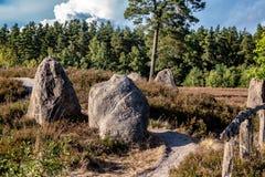 在德国荒地风景的巨石纪念碑与开花的石南花植物 免版税库存图片