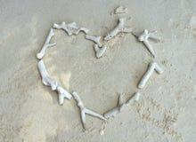 在心形的白色残破的死的珊瑚在海滩 图库摄影