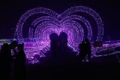 在心脏下的色的光恋人容忍 免版税图库摄影