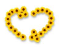 在心脏和回收标志形状的向日葵  免版税库存图片