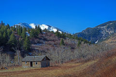 在心脏小山附近的被放弃的在刘易斯的客舱, MT和克拉克国家森林 免版税图库摄影