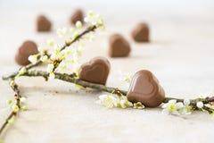 在心脏形状和开花的巧克力果仁糖分支为valen 库存照片