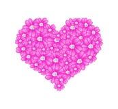 在心脏形状的桃红色欧蓍草花 图库摄影