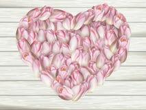 在心脏形状的美好的花框架 10 eps 免版税库存照片