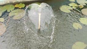 在心脏形状的水飞溅 库存图片