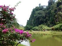 在怡保附近的一个湖在马来西亚 免版税库存照片
