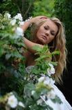 在性感凝视的玫瑰的金发碧眼的女人 免版税库存图片