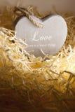 在恋爱地方的唯一孤立木心脏 库存照片