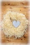 在恋爱地方的孤立木心脏 库存图片