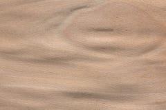 在您理想的口气的新的山毛榉表面饰板纹理 免版税库存照片