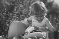 在您的网站面对时尚小女孩或孩子 小女孩在您advertisnent的面孔画象 野餐的逗人喜爱的孩子 图库摄影