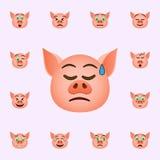 在悲伤的猪在一个冷汗emoji象 网和机动性的猪emoji象全集 库存例证