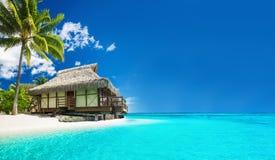 在惊人的海滩的热带bungallow与棕榈树 库存图片