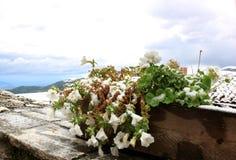 在意大利山的第一雪 免版税库存照片