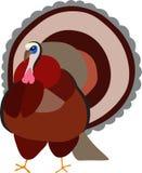 在感恩季节外面的土耳其鸟 库存图片