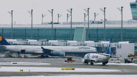 在慕尼黑机场登陆的EgyptAir飞机MUC 股票视频
