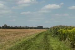 在慕尼黑附近的农田 免版税库存图片