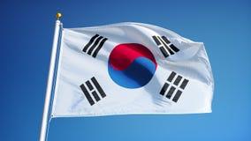 在慢动作的韩国旗子无缝使成环与阿尔法 皇族释放例证