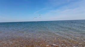 在慢动作,沿海滩的波浪辗压的海波浪在慢动作,美好的海景 影视素材