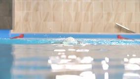 在慢动作,行动的游泳者的游泳在水池 股票视频