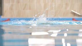 在慢动作,行动的游泳者的自由式游泳在水池 影视素材