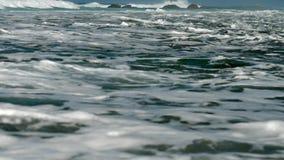在慢棕色的岩石的巨大rugh海浪卷 股票视频