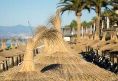 在懒人上的太阳树荫在海滩 免版税库存照片