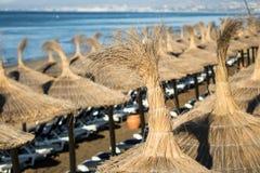 在懒人上的太阳树荫在海滩 库存图片