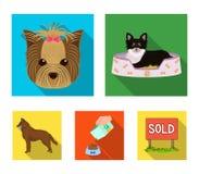 在懒人,宠物,一个碗的枪口的一条狗用饲料,与一个球的一只护羊狗在他的牙 宠物,狗关心集合 图库摄影