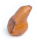 在成熟梨被隔绝反对白色 免版税图库摄影