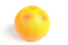 在成熟白色的葡萄柚 免版税库存照片