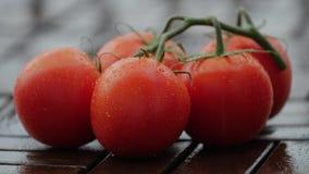 在成熟蕃茄下落  关闭 股票视频