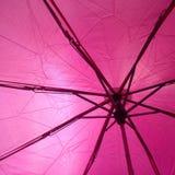 在我的伞下! 库存图片