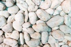 在我的庭院的白色石头 免版税图库摄影