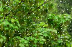 在我的窗口的雨下落 免版税图库摄影