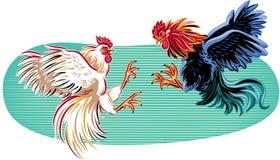 在战斗的两只公鸡 免版税库存照片