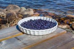 在户外板材的蓝莓 库存照片