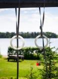 在户外树锻炼之间的体操圆环 库存照片