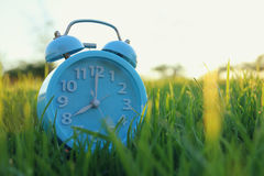 在户外绿草的减速火箭的闹钟在公园 免版税图库摄影
