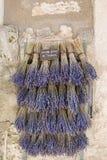 在房子墙壁上的淡紫色花束 库存图片