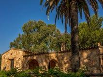 在房子旁边的棕榈树 图库摄影