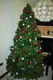 在房子等待的圣诞节装饰的圣诞树 免版税库存图片