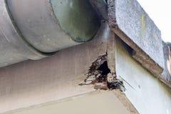 在房子顶部的腐烂的木头 免版税图库摄影