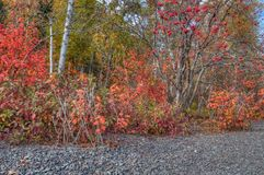 在所有季节期间, Splitrock灯塔是一个普遍的国家公园 图库摄影